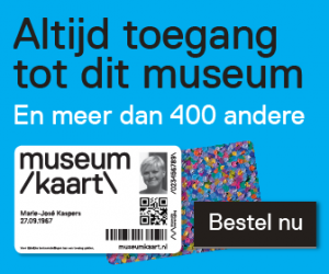 mk_banner_museum-site_blauw_large rectangle